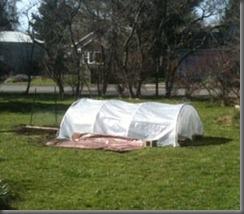 2011-hoop.house